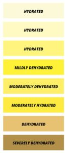 Urine Color Hydration Chart